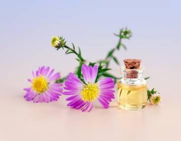 Масло от целлюлита и для похудения: самые эффективные экстракты для применения в домашних условиях, показания и противопоказания, способы использования, польза, целебные свойства